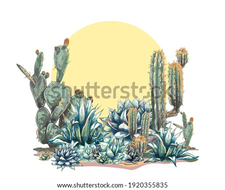 graphic colored blue agave, main ingredient of tequila, sketch, vector illustration isolated on white background, drawing of agave cactus, side view, colorful illustration, set, Desert Cactus Сток-фото ©