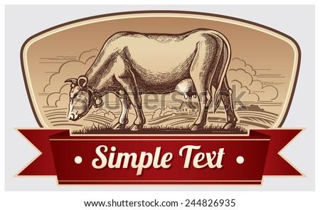 Graphic cow in label design.
