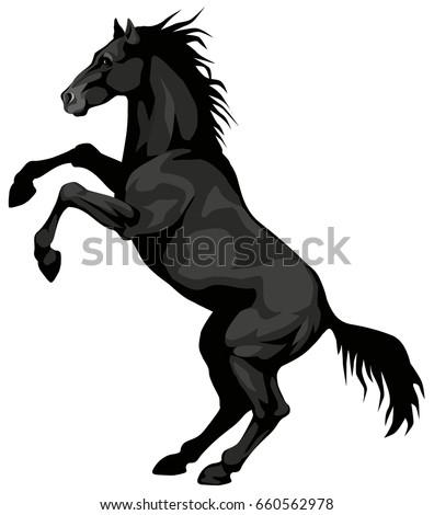 graphic illustration of a black