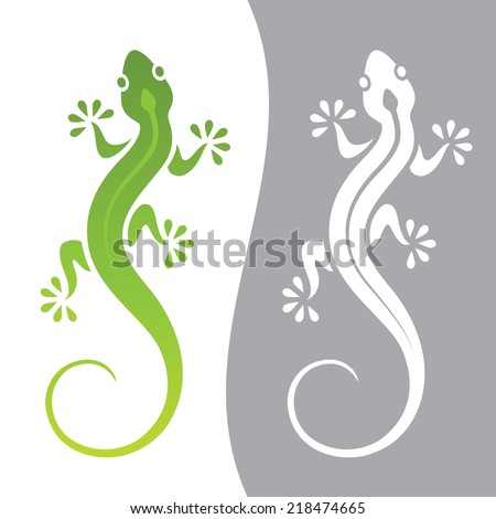 graphic illustration of lizard