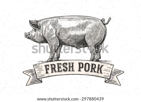 graphic pig with the