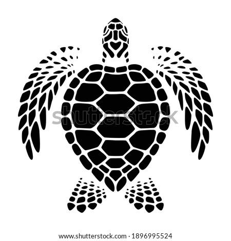 graphic sea turtle swimming, vector Foto d'archivio ©