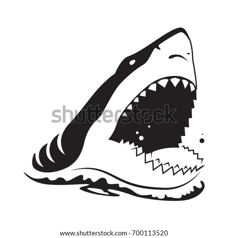 graphic shark on white