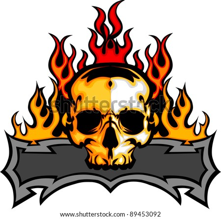 graphic skull  vector image