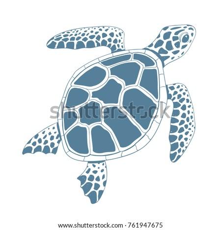 Graphic turtle. Vector illustration.