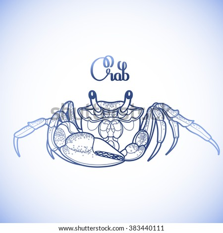 graphic vector crab drawn in