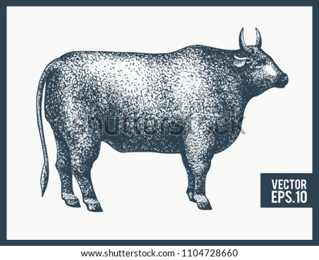 graphical bull silhouette....