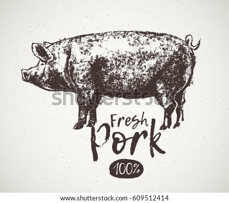 Graphical pig and inscription, hand drawing illustration.