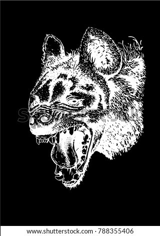 Graphical sketch of hyena isolated on black background,vector
