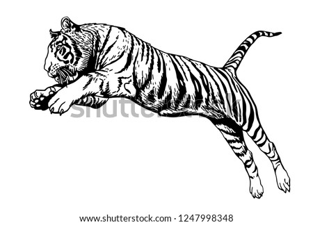 stock-vector-graphical-tiger-jumping-isolated-on-white-background-vector-sketch-tattoo-and-logo-illustration