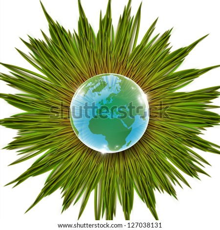 Grass and Earth vector illustration