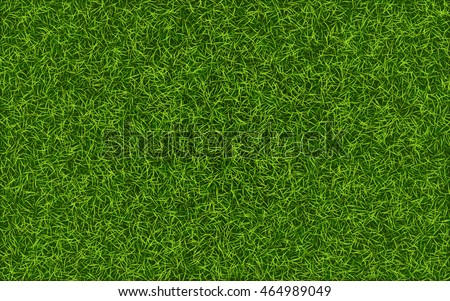 stock-vector-grass-background-fresh-lawn-grass-texture-perfect-green-grass-carpet-grass-backdrop-for-your