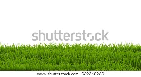 Grass Border, Vector Illustration