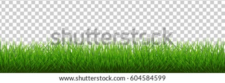 stock-vector-grass-border-vector-illustration