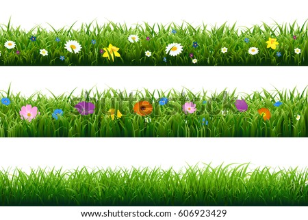 grass border with flower with