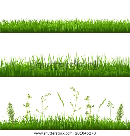 Grass Borders With Gradient Mesh Vector Illustration