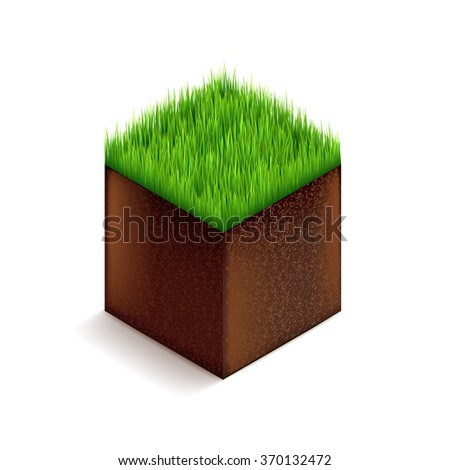 grass cube isolated on white