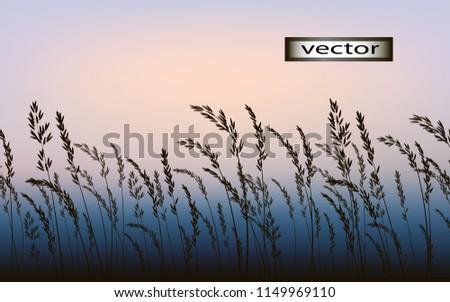 grass landscape nature