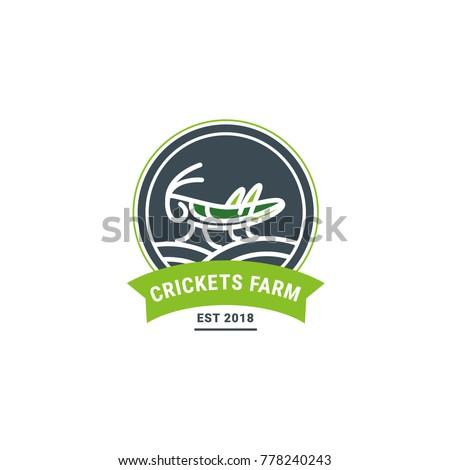 grasshopper on the field