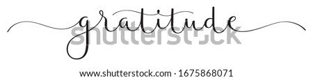 GRATITUDE black vector brush calligraphy banner with swashes Сток-фото ©