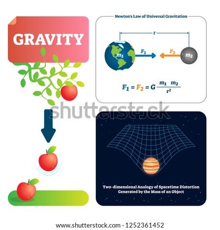 gravity vector illustration