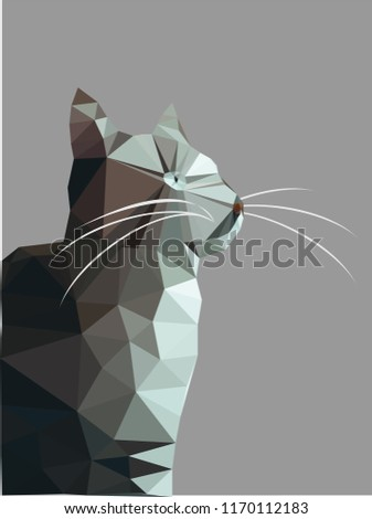 Stock Photo Gray cat white eyes isolated on gray background, light gray kitty low polygon, animal crystal design illustration, modern geometric graphic.