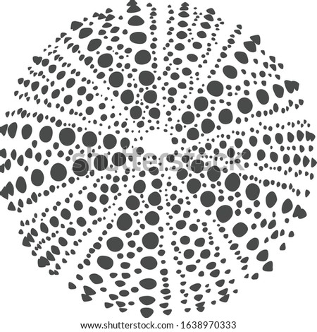 Gray Dotted Silhouette of a Sea Urchin Stockfoto ©