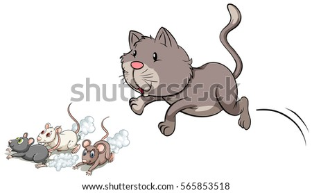 gray kitten chasing mouse
