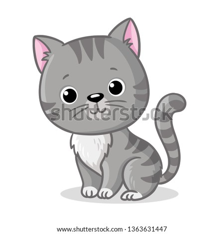 gray kitten sitting on a white