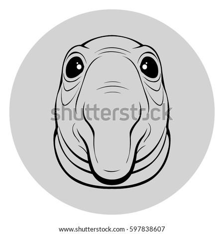 gray meme homunculus
