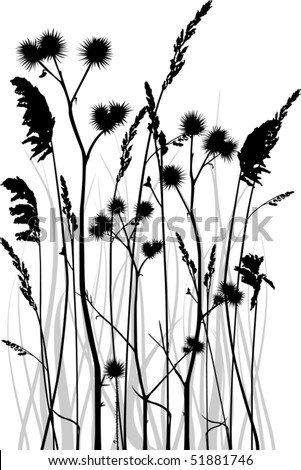 Gray scale vector silhouette of grass blades with bur. All separate objects.