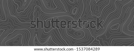 Gray topographic line contour map background, geographic grid map