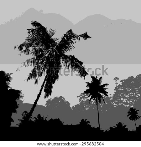gray tropical landscape scenery