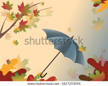 gray umbrella against the sky
