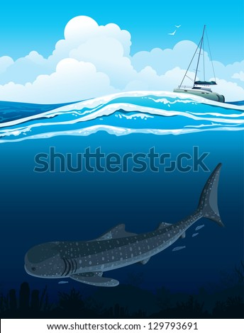 Gray whale shark swims under white boat on a blue sea background.