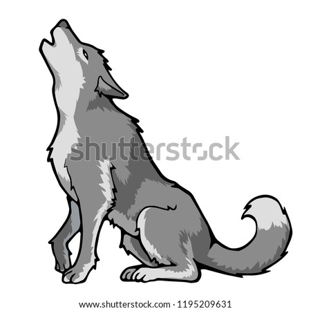 Gray wolf howls