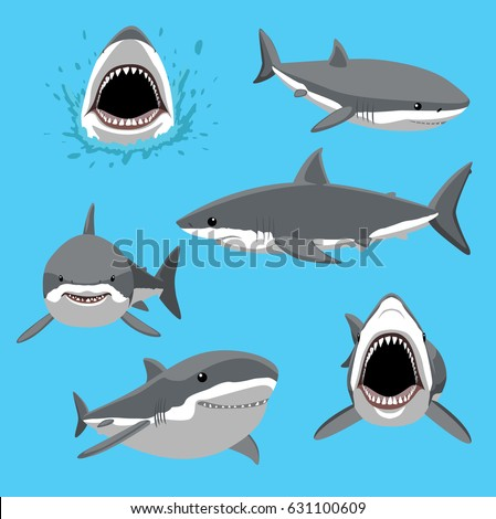 great white shark six poses