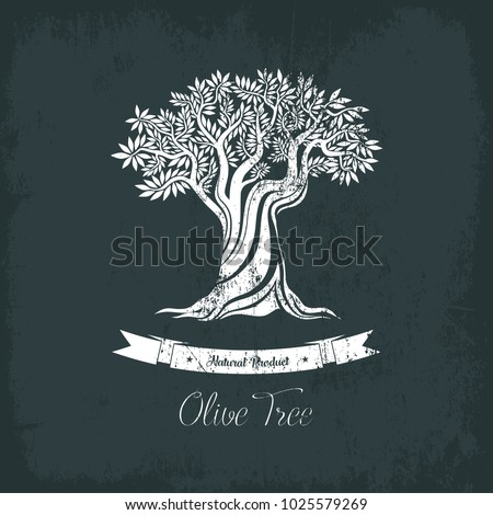Greece olive tree logo with branches, vegetarian food. Olive grove banner or badge, oil sticker for bottle. May be used for vintage greek olive tree emblem, sign, liquid of olive tree ingredient