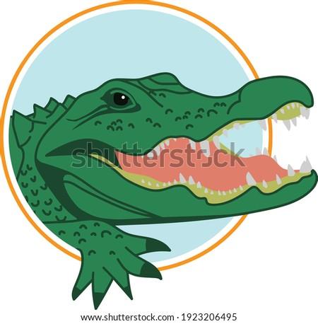 Green Alligator Vector Logo in Blue Circle Stok fotoğraf ©