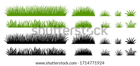 green and black grass