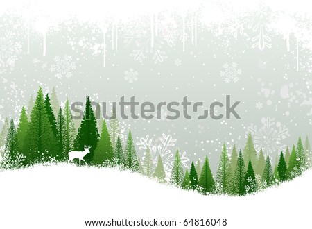 green and white winter forest