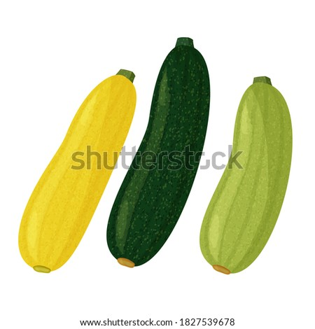 Green and yellow squash and zucchini on white background. Vector realistic meal collection. Сток-фото ©