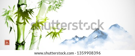 green bamboo and far blue