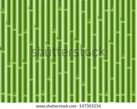 Green bamboo background  ,vector illustration