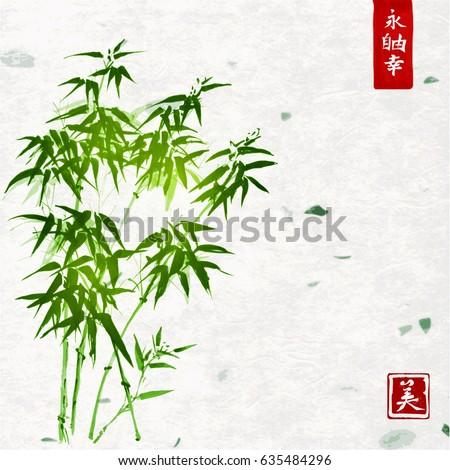green bamboo on handmade rice