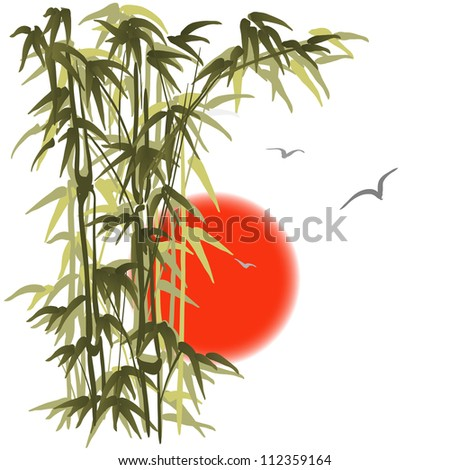 Green bamboo on sunset background