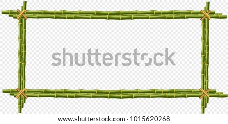 green bamboo steam frame