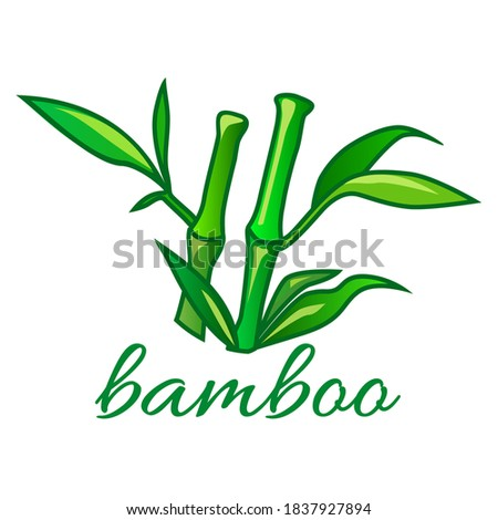green bamboo sticks with leaves
