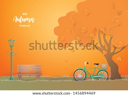 green bicycle under the tree in