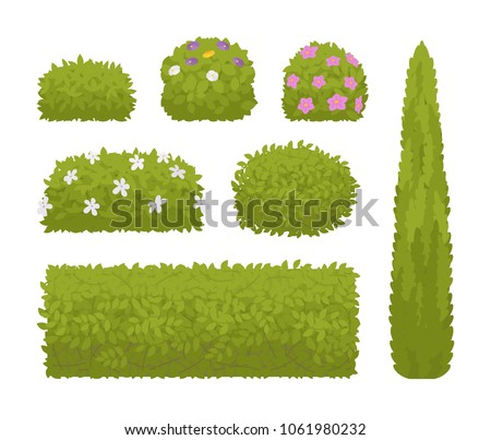 Green bushes set. Low plant with branches and leaves, clump of shrub ornamental trimming for well designed garden. Urban landscape environment, ecology concept. Vector flat style cartoon illustration
